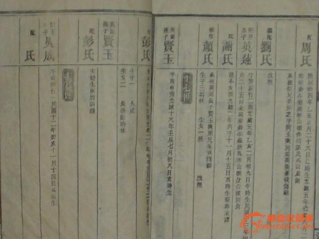 杨氏族谱图片