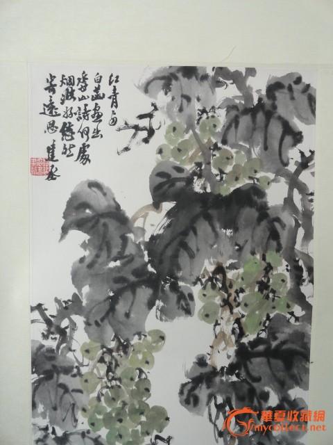原装裱著名书画名家 绘画的葡萄图